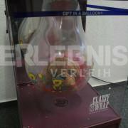 Ballonverpackungsmaschine WZ 3