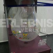 Ballonverpackungsmaschine Wz1
